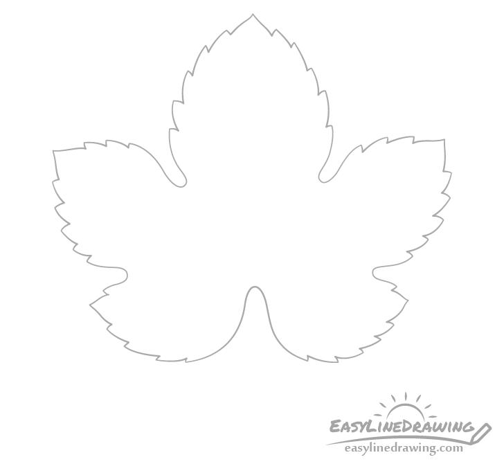 Grape leaf detailed outline drawing