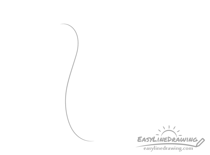 Scroll curve drawing