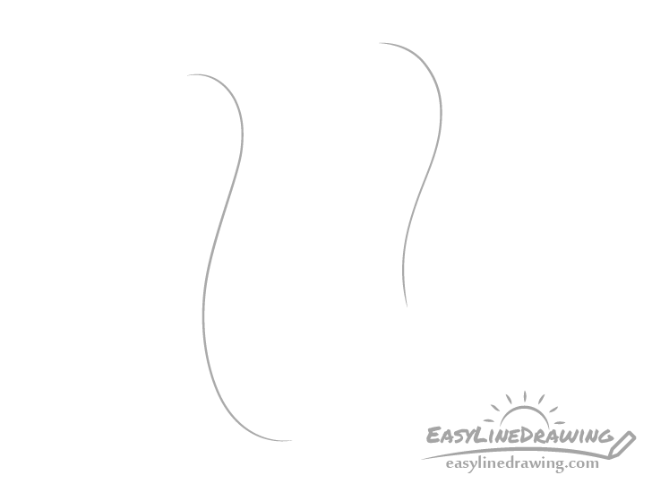 Scroll with drawing