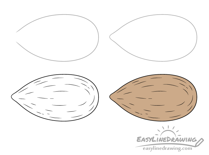 Almond drawing step by step