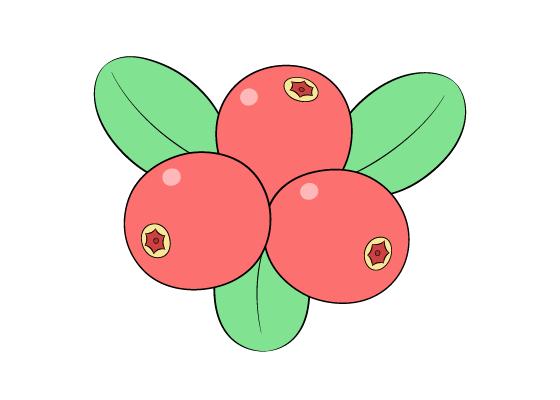 Cranberries drawing tutorial