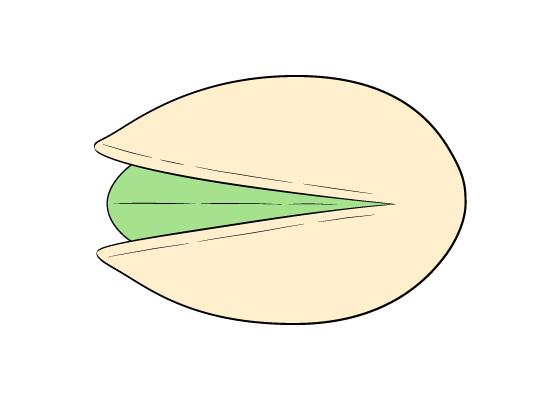 Pistachio drawing tutorial