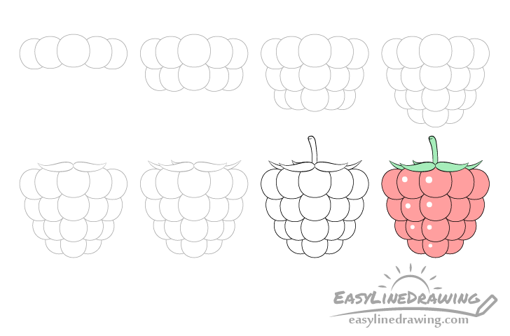 Raspberry drawing step by step