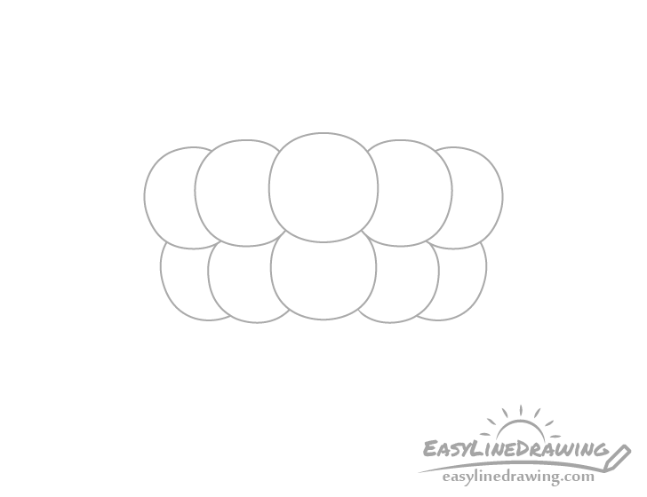 Raspberry middle top drupelets drawing